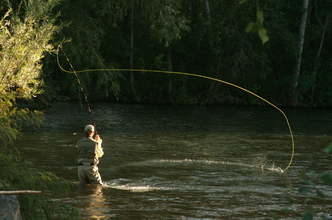 Some of the best places to relax during the month of july for Best fishing in idaho
