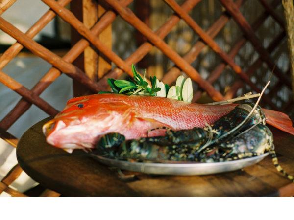 Taste of Lamu