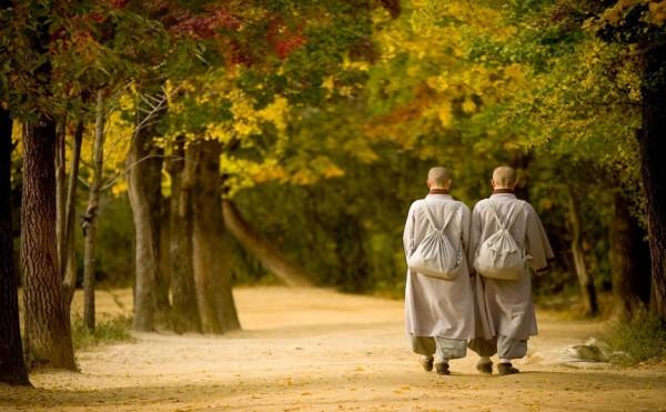 Maple leaf walkway