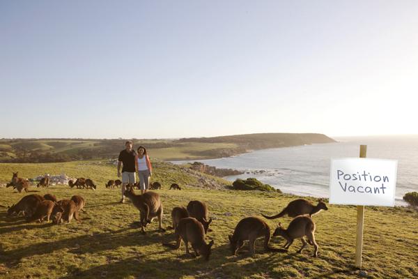 Best Jobs in the World - Wildlife Caretaker (South Australia)