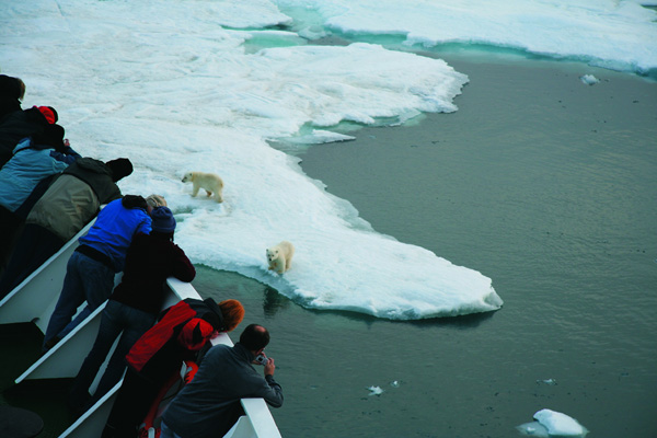 Peregrine's new Arctic voyage explores the realm of the polar bear