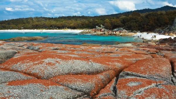 East Coast Escape,Tasmania