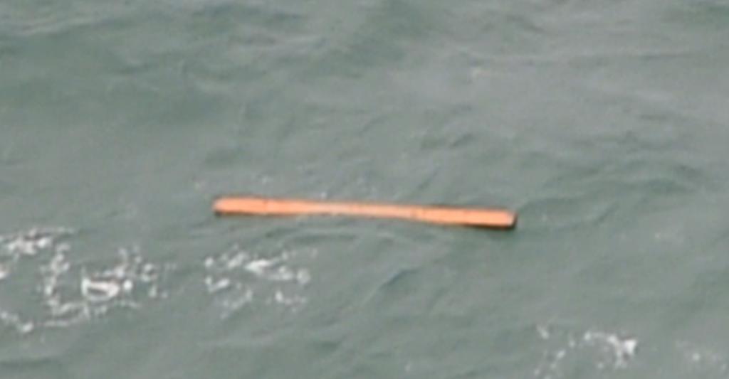 Missing AirAsia Plane — QZ8501