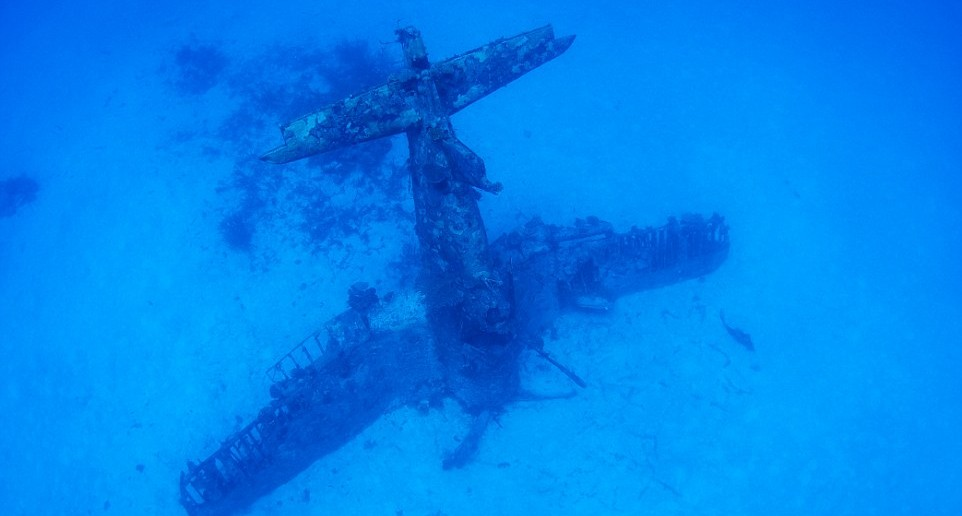 A F4U Corsair which landed on its propeller and has remained upright for over 70 years