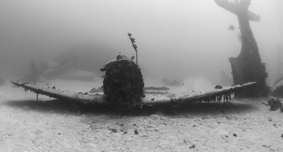 Incredible photographs of over 150 lost WWII aircrafts scattered on the ocean floor, taken by Brandi Mueller