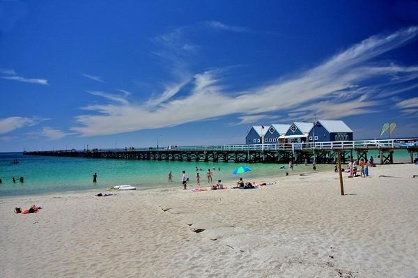 Australia_Acquatic_Beach_Life
