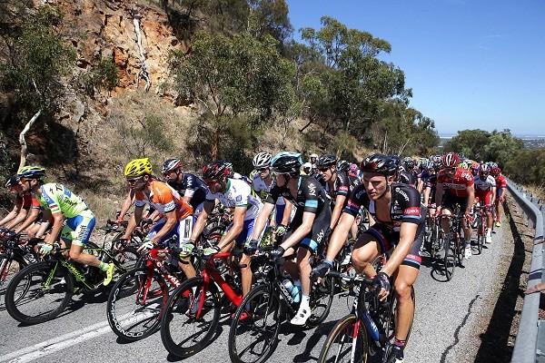 Santos-Tour-Down-Under-cyclists