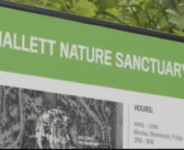 NYC Central Park reopens a secret sanctuary nearly after a century