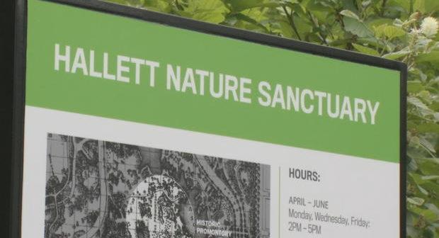 Hallett-Nature-Sanctuary-Central-Park-NYC