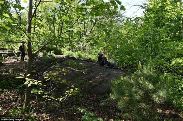 Hallett-Nature-Sanctuary-NYC-Central-Park
