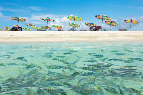 Thailand-closes-down-Koh-Khai-Islands