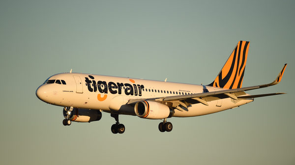 New seasonal inflight menu Tiger Bites is available now on all Tigerair services