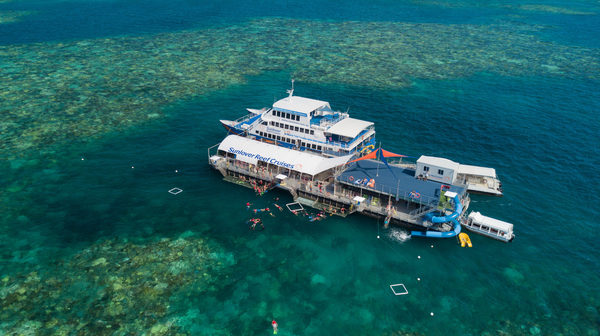 Sunlover Reef Cruises appoints Brian Hennessy as the new head of the sales
