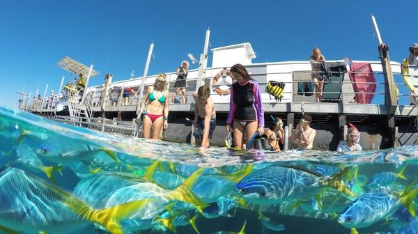 Sunlover Reef Cruises launches floating theme-parks