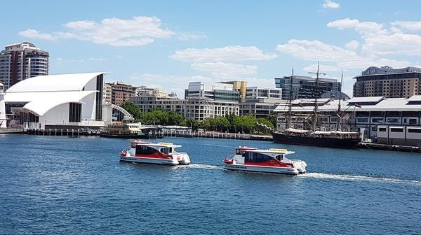SeaLink to commence the first ever fish market ferry service